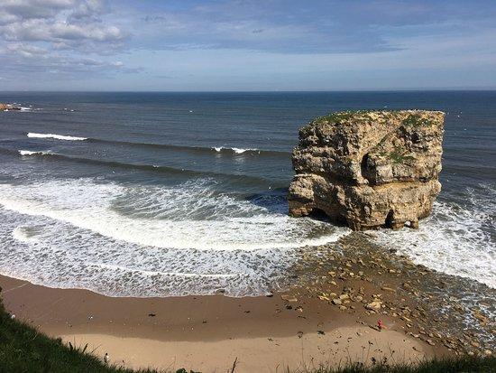 East Durham Coast : photo4.jpg