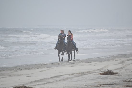 Inlet Point Plantation Stables: once in a lifetime ride that we will cherish forever!
