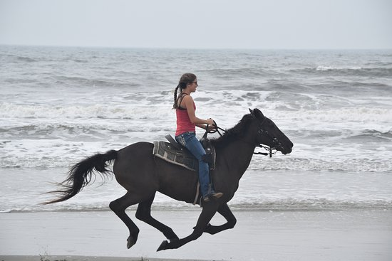 Inlet Point Plantation Stables: they will let you ride as fast as your experience will let you.