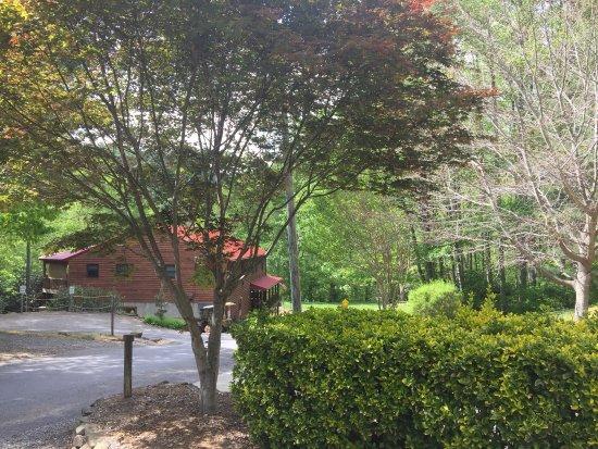 Swannanoa, NC: photo1.jpg