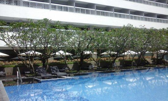 royal ambarrukmo yogyakarta olympic size swimming pool - Olympic Size Swimming Pool