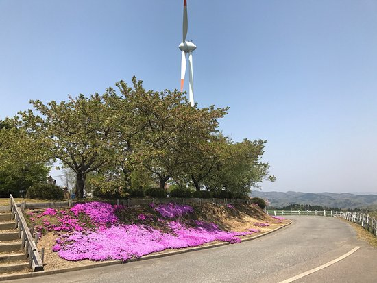 Mt. Inaba