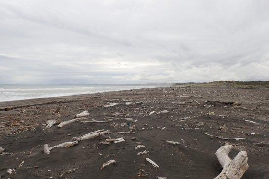 Whanganui - Castlecliff Beach 19