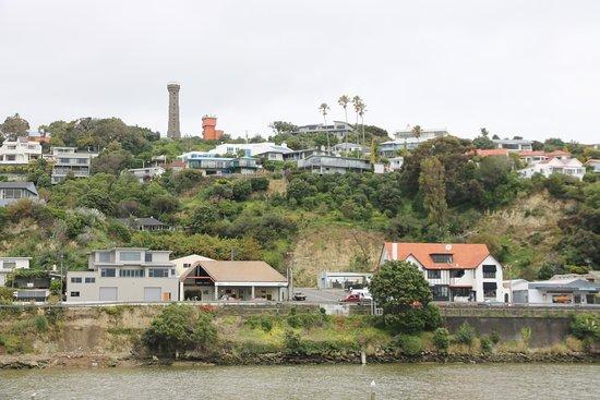 Wanganui, Nouvelle-Zélande : Whanganui - River 2