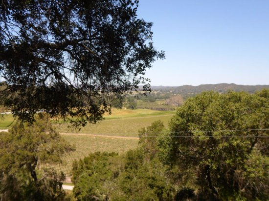 Santa Margarita, Californien: Zipping over the vines!