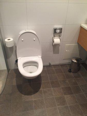 ホテル スカンセン バステッド Picture