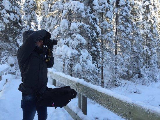 Emerald Lake Lodge: photo1.jpg