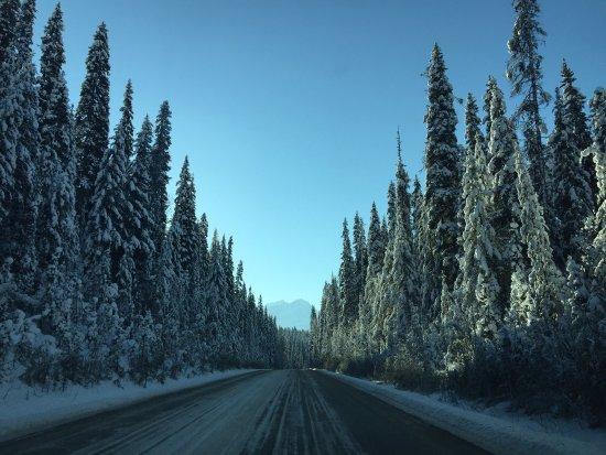 Emerald Lake Lodge: photo2.jpg
