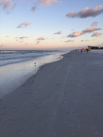 The Palm Bay Club: Morning Walk on Siesta Key