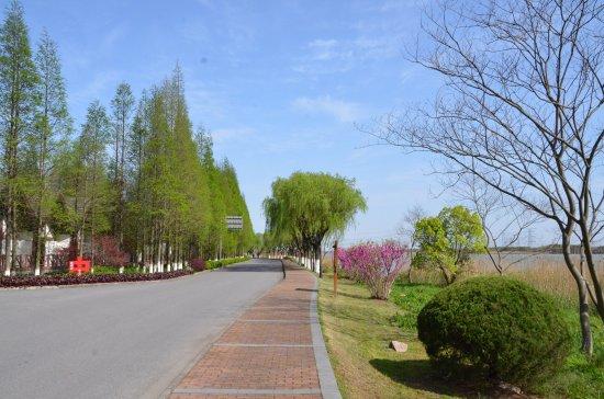 Sun Island Resorts : photo5.jpg