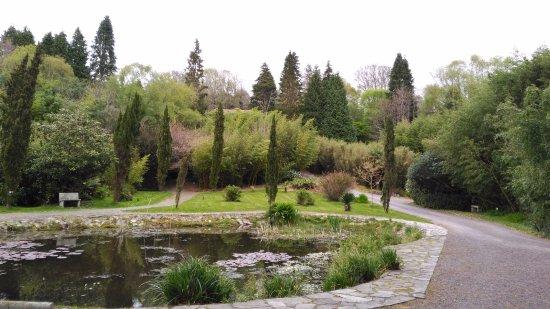 Glengarriff Bamboo Park : Lago central