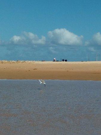 Bazaruto Archipelago, Mozambique: Duna