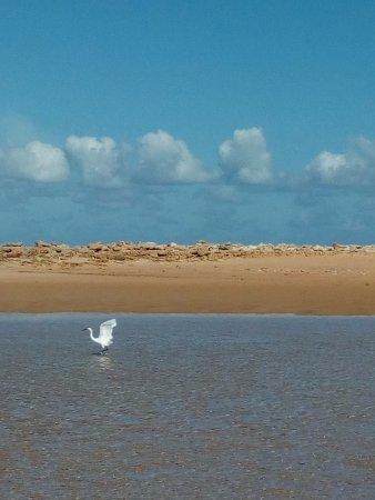 Bazaruto Archipelago, Mozambico: Duna