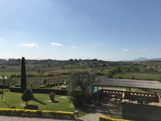 Acquaviva di Montepulciano, Italy: photo3.jpg