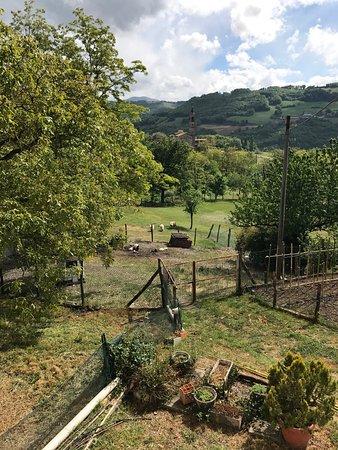 Pellegrino Parmense, Italia: photo4.jpg