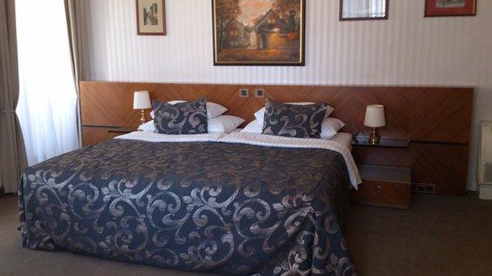 Hotel Pod Vezi: Room 24