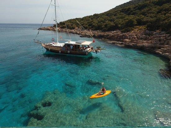 Boat Trips by Captain Ergun : photo0.jpg