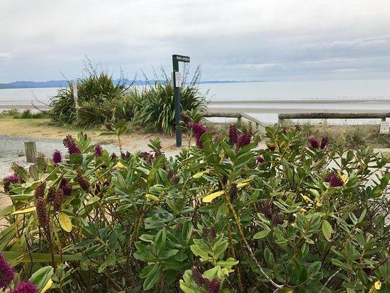 Pohara, Nueva Zelanda: Golden Bay