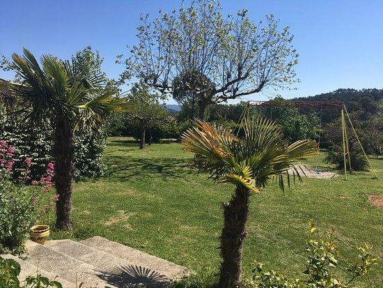 Le Grand Chêne de Sillans : photo4.jpg