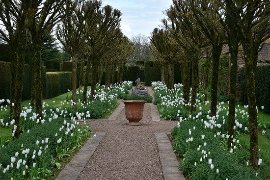 Cothay Manor: Formal Gardens you could spend hours exploring