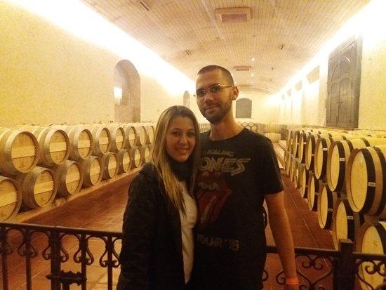 Concha y Toro Winery: Adega nova