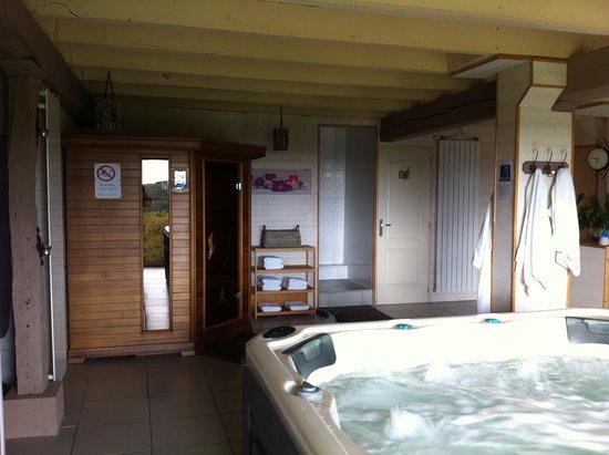 Spa avec le sauna le jacuzzi le hammam et le coin salon for Sauna la detente