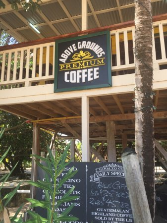Above Grounds Coffee : Treehouse coffee!