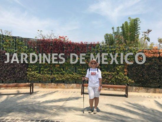 Una bella entrada muy limpio buena comida ba os muy for Jardines mexico