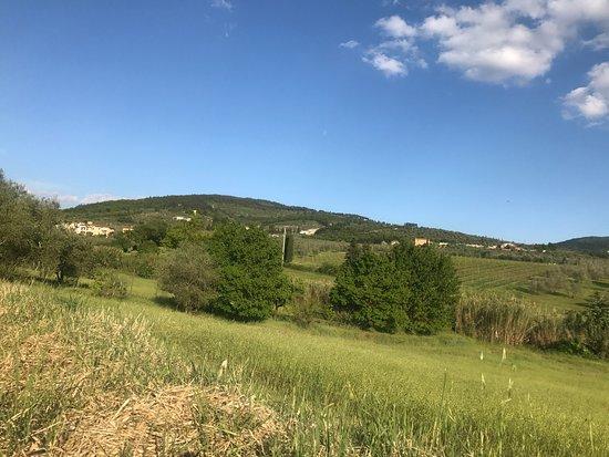 Le Civette Country Resort: photo0.jpg