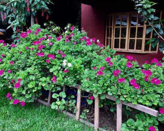 Hospedaje Los Jardines