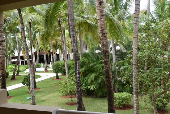 Dreams Palm Beach Punta Cana: View from our Preferred Room....