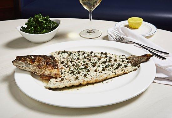 Tripadvisor Fish Restaurant In Miami Beach