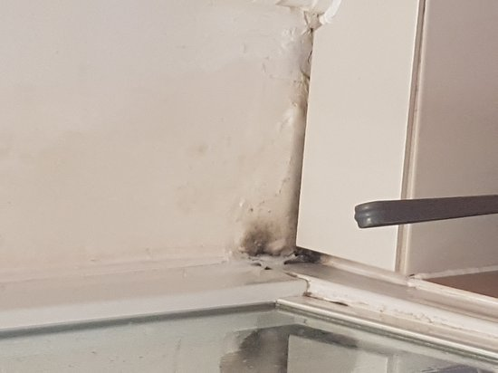 Belgravia Rooms: Mould, leaking shiwer stall, poor water pressure and broken toilet seat at flat 43 Belgravia Hou