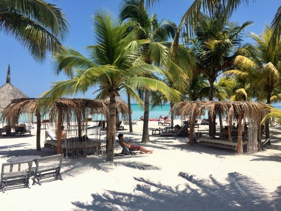 Picture of holbox hotel casa las tortugas - Holbox hotel casa las tortugas ...