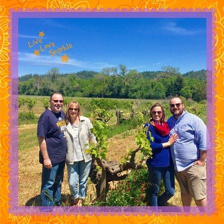 Da Vine Wine Tours: Old vine Zinfandel-Dry Creek Valley