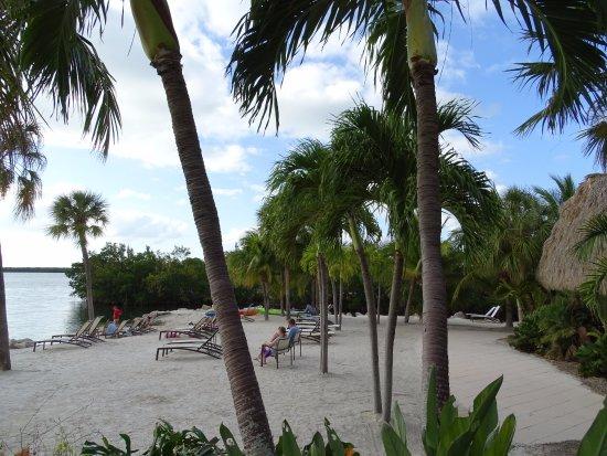 Hampton Inn Key Largo: plage