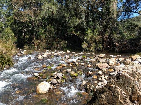 The creek was beautiful