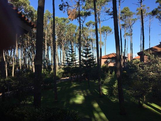 Il Belvedere: photo1.jpg