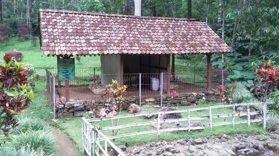 Purworejo, Indonezja: 20170425_135511_large.jpg