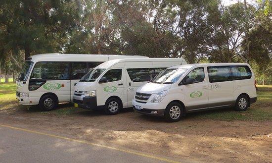 Des's Minibus