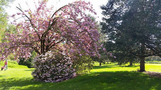 Clackamas, OR: Spring at Sah-Hah-Lee