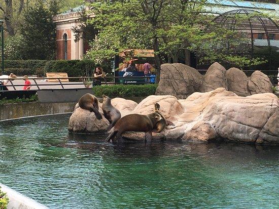 Bronx Zoo: photo1.jpg