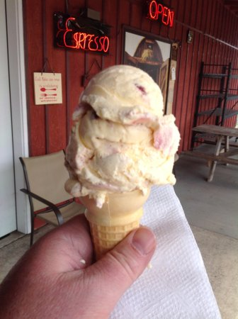 Stayton, OR: Huckleberry cheesecake ice cream