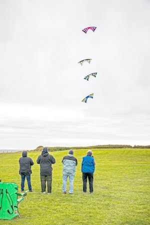Fort Casey State Park: Some old folks flying kites in formation.