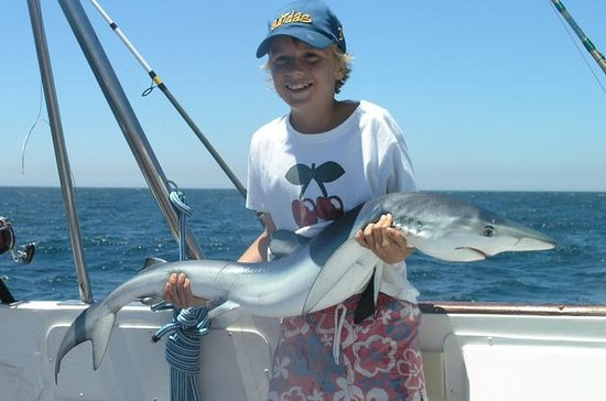 Shark Fishing from Albufeira