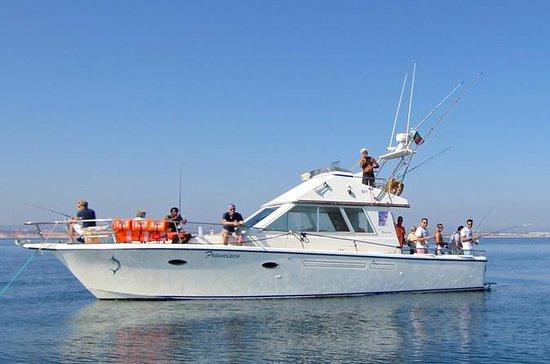 Sorties de pêche privée d'Albufeira