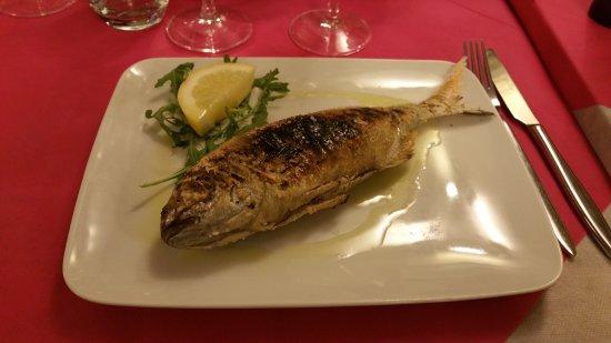 Comerio, Włochy: Tiramisù e Pitzorna al sale