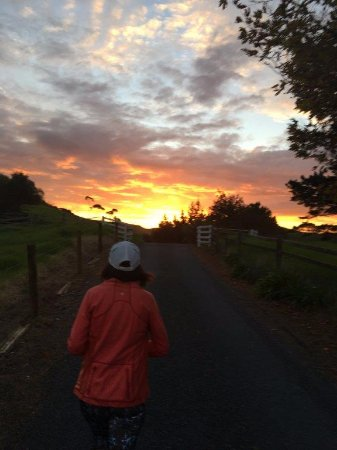 Kaeo, นิวซีแลนด์: evening stroll before dinner and glass of wine