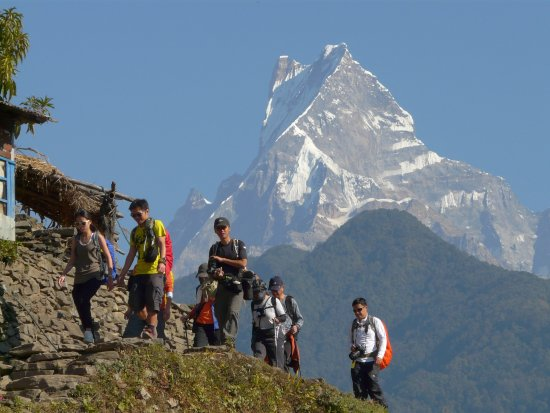 Mother Land Nepal Trekking & Expedition