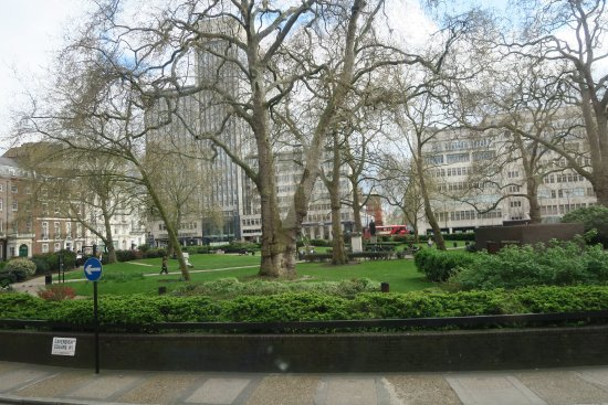 Cavendish Square Gardens